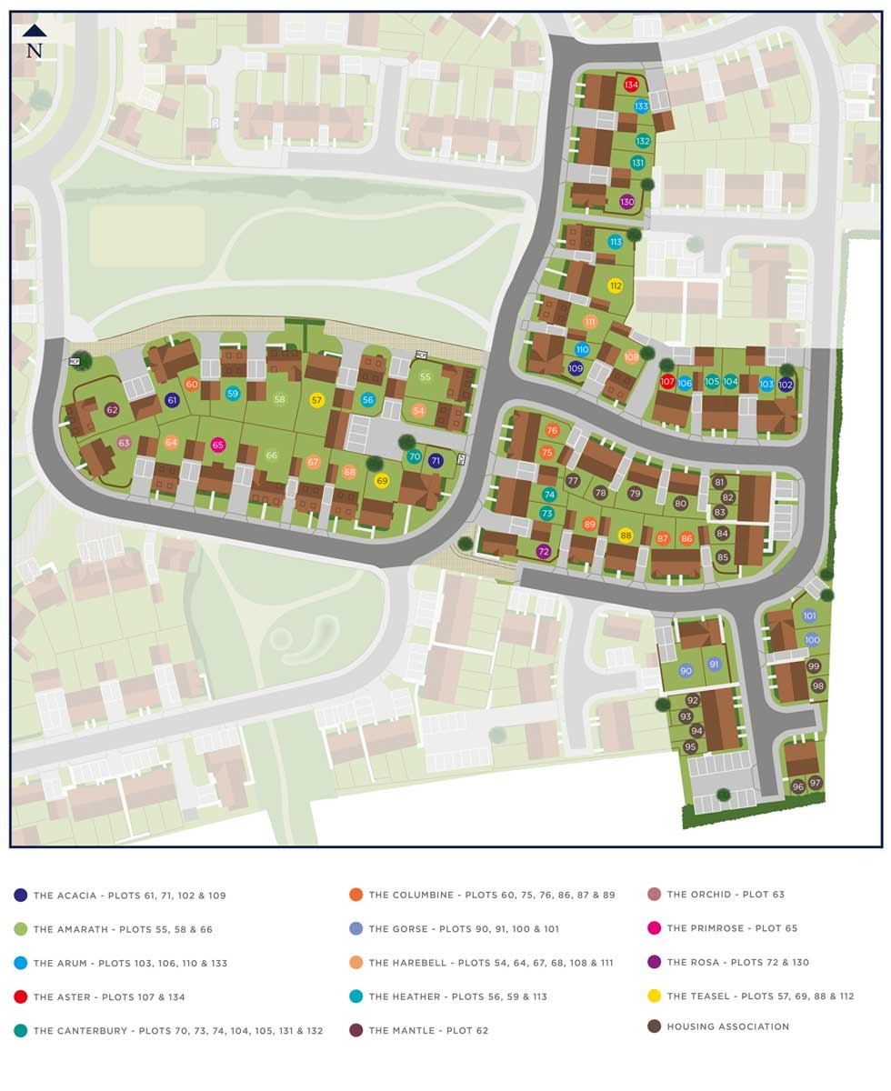 38The Aster Siteplan